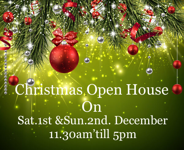 CHRISTMAS OPEN HOUSE🎅🏻